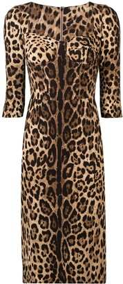 Dolce & Gabbana fitted leopard print dress