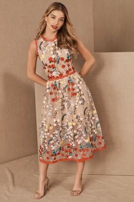 Bronx & Banco Amala Dress