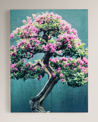 "Four Hands Art Studio ""Purple Tree"" Photography Print on Maple Box Framed Wall Art"