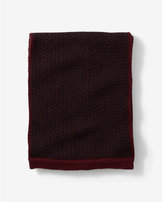 Express tri-color merino wool scarf