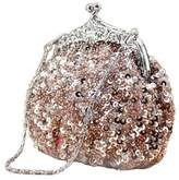Chicastic Fully Sequined Mesh Beaded Antique Style Wedding Evening Formal Cocktail Clutch Purse - Champagne/