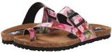 BC Footwear Boxer