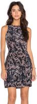 Greylin Skinner Silk Dress