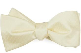 Tie Bar Mini Dots Butter Bow Tie