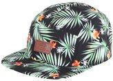Vans Men's Davis 5 Panel Men's Black Camper Hat With Print 100% Polyester