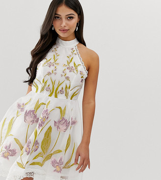 Asos DESIGN Petite high neck mini dress with cut outs and embroidery and lace