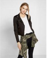 Express Ponte Knit Moto Jacket