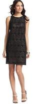 LOFT Petite Crochet Lace Shift Dress