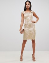 Lipsy embroidered midi pencil dress with cap sleeve in gold