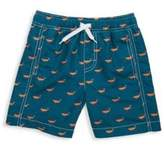 Hatley Toddler's, Little Boy's & Boy's Tiny Whales Swim Trunks