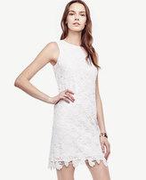 Ann Taylor Petite Floral Lace Shift Dress