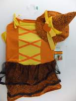 Martha Stewart Orange Witch Pet Costume For L Large Dogs