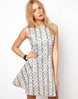 Lavish Alice Patent Skater Dress In Python Print