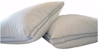 Natural Comfort Allergy Shields Microfiber Pillows, King