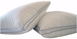 Natural Comfort Allergy Shields Microfiber Pillows, Standard