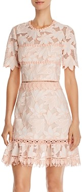 Saylor Brigit Floral Lace Mini Dress