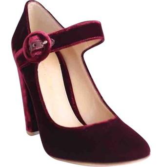 Gianvito Rossi Burgundy Velvet Heels