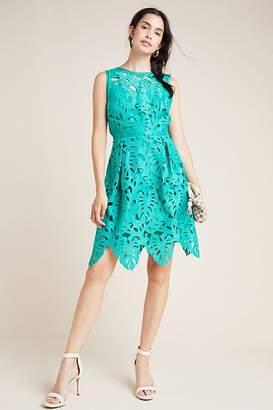 Eri + Ali Toulouse Lace Mini Dress