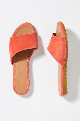 Faryl Robin Testa Slides By in Orange Size 37