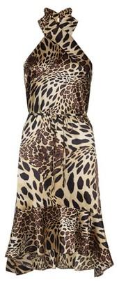 Dorothy Perkins Womens Vesper Multi Colour Leopard Print Dress, Leopard