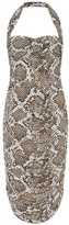 Thumbnail for your product : Norma Kamali Exclusive to Mytheresa a Bill snake-print jersey halter dress