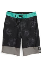 Vans Boy's Valley View Board Shorts