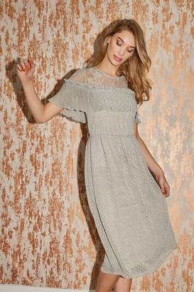 Little Mistress Danni Waterlily Textured Spot Midi Dress