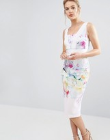 Ted Baker Hanging Gardens Bodycon Dress