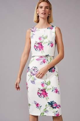 Phase Eight Womens Cream Tabatha Printed Scuba Dress - Cream