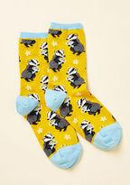 ModCloth Would You Badger? Socks