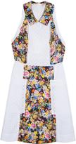 Mary Katrantzou Amblie Dress