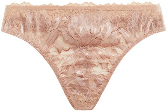 Cosabella Natalia Stretch-leavers Lace Low-rise Thong