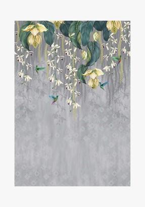 Osborne & Little Trailing Orchid Wallpaper