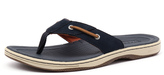 Sperry Baitfish Thong Navy/Tan