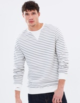 Pitt Stripe Crew-Neck Sweater