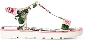 Dolce & Gabbana Rose Printed Leather Sandals