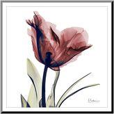 Art.com Single Tulip Wall Art Print
