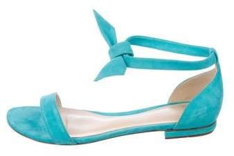 Alexandre Birman Suede Ankle Tie Sandals