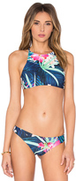 Stone Fox Swim Namema Bikini Top