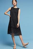 Ne Quittez Pas Montmartre Lace Swing Dress