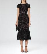 Reiss Erin Lace Midi Dress