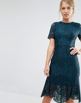 Coast Linera Lace Dress