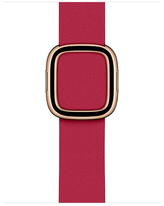 Apple 40mm Raspberry Modern Buckle - Large