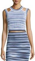Ronny Kobo Wilhemina Striped Crop Top, Black Multi
