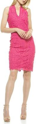 Alexia Admor Karyn Crochet Lace Sheath Dress