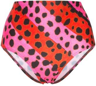 House of Holland Leopard Print Striped Bikini Bottoms