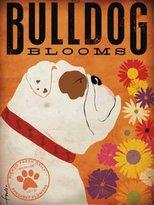 "Laminated Bulldog Blooms by Stephen Fowler 16""x12"" Art Print Poster"