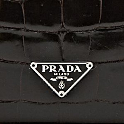 Prada pristine (PR Chocolate Brown Crocodile Clutch Bag