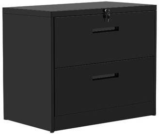Latitude Run Anderw 2-Drawer Lateral Filing Cabinet Color: Black