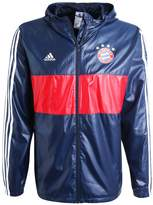 Adidas Performance Fc Bayern MÜnchen Club Wear Collegiate Navy/white